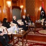 Zeidan calls for US help in security training