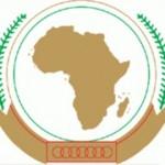 Zeidan in terror talks at African Union summit in Addis Ababa