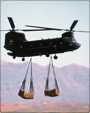 A $32 million Boeing Chinook CH-47D