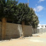 Wall built at Derna university to separate male and female students