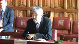 Britain's ambassador to Libya Peter Millett reported on Libya to the House of Lords last week (Photo: Parliament TV).