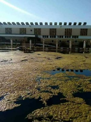Raw sewage swilling outside the Sabri clinic (Photo: social media)