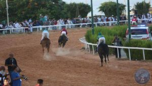 Libya Peace Cup race at Tripoli's Busetta racecourse (Photo: LANA)