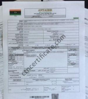 Audit Bureau to review contracting procedures of controversial ECTN